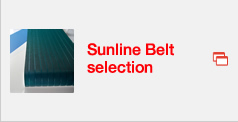Sunline Belt selection
